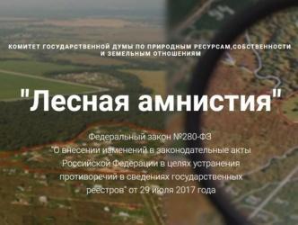 280 закон о лесной амнистии с дополнениями